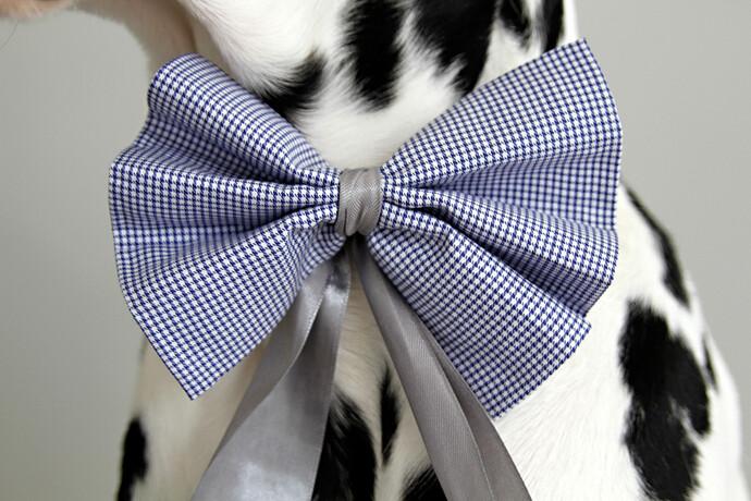 No-Sew DIY Dog Bows and Bow Ties