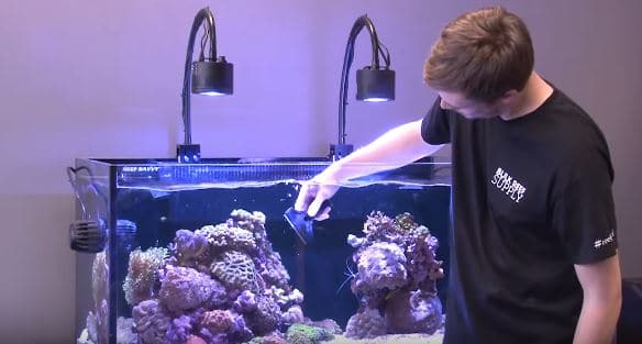 How-to-Clean-Fish-Tank-Glass